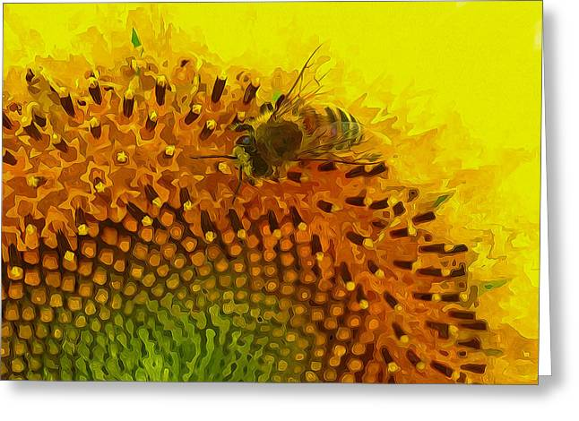 Close up of bee on sunflower 1 Greeting Card by Lanjee Chee