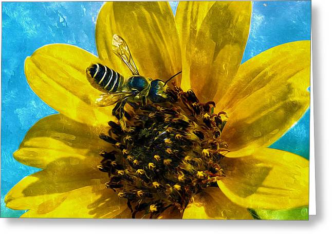 Antenna Paintings Greeting Cards - Close up of bee on sunflower Greeting Card by Lanjee Chee