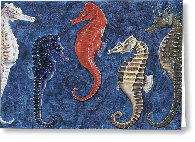 Fish Drawings Greeting Cards - Close-up of five seahorses side by side  Greeting Card by English School