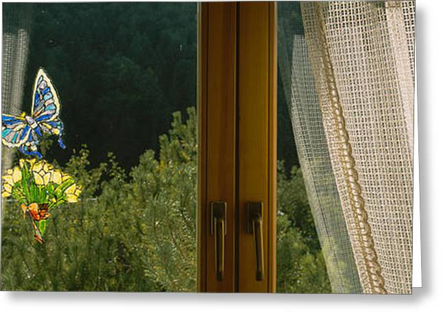 Window Art Greeting Cards - Close-up Of Flowers And A Butterfly Greeting Card by Panoramic Images