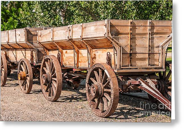 Sue Smith Greeting Cards - Close-up of Grain Wagons Greeting Card by Sue Smith