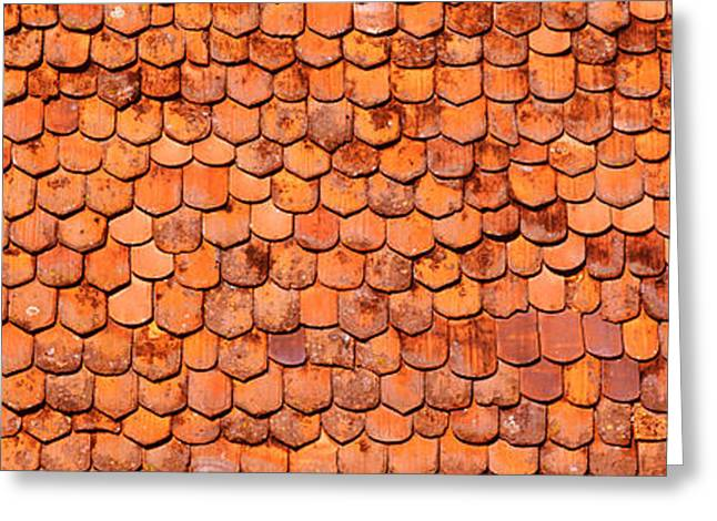 Close-up Of Old Roof Tiles, Rothenburg Greeting Card by Panoramic Images