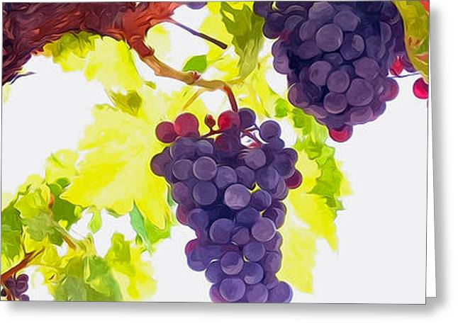 Organic Greeting Cards - Close Up of Red Wine Grapes Hanging on the Vine on a Sunny Day Greeting Card by Lanjee Chee
