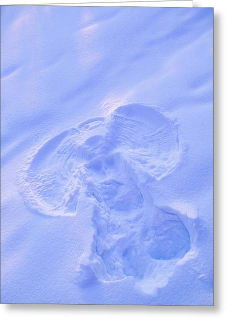 Angel Blues Greeting Cards - Close Up Of Snow Angel At Sunset With Greeting Card by Kevin Smith