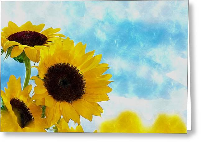 Cultivation Paintings Greeting Cards - Close-up of sun flower against a blue sky Greeting Card by Lanjee Chee