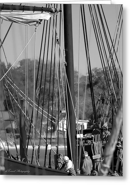 Pilgram Greeting Cards - Close Up of Tall Ship  Greeting Card by Debra Forand