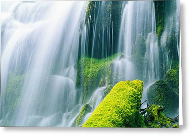 Lush Green Greeting Cards - Close-up Of Waterfall On Moss Covered Greeting Card by Panoramic Images