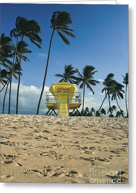 Shack Greeting Cards - Closed lifeguard shack on a deserted tropical beach with palm tr Greeting Card by Edward Fielding