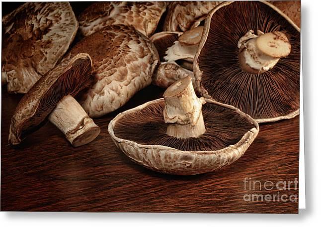 Button Mushrooms Greeting Cards - Closeup of fresh portobello mushrooms Greeting Card by Sandra Cunningham