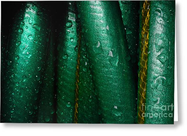 Wrapped Around Greeting Cards - Closeup of wet garden hose Greeting Card by Amy Cicconi