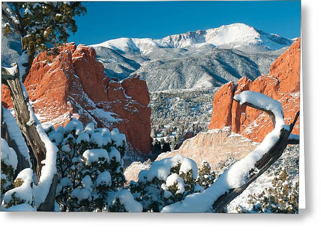 Manitou Springs Greeting Cards - Clothed in White at the Garden Greeting Card by John Hoffman