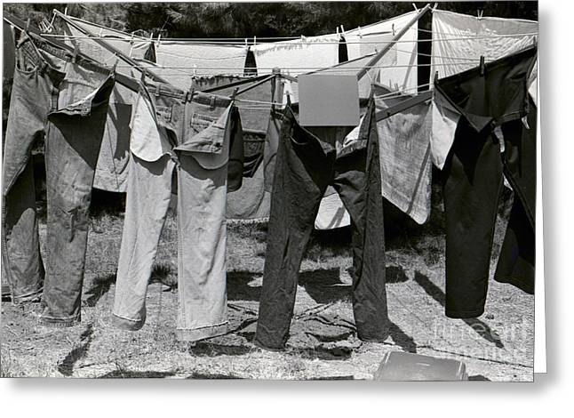 Cellphone Greeting Cards - Clothesline 1 Greeting Card by Alan Thwaites