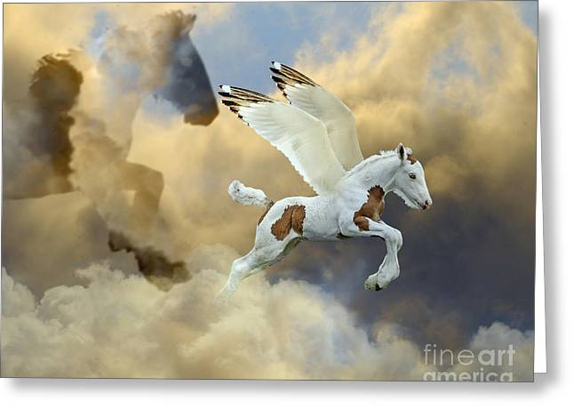 Gypsy Cob Greeting Cards - Cloud Mother Greeting Card by Judy Wood