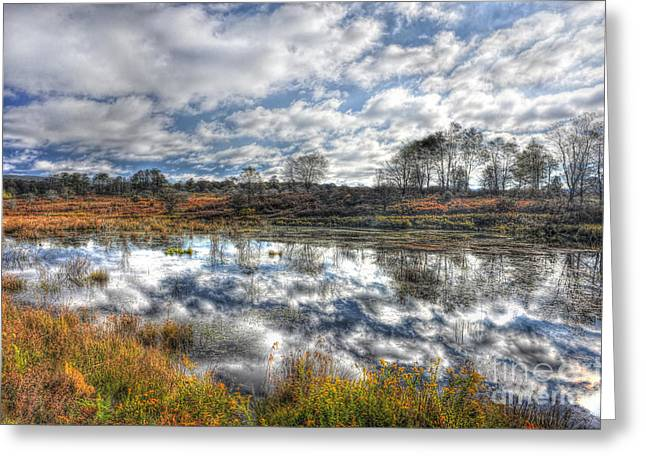 Cloud Reflections In Beaver Pond Canaan Valley Greeting Card by Dan Friend