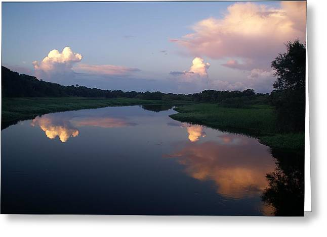 Reflecting Water Greeting Cards - Cloud Reflections in Sarasota Greeting Card by Patricia Twardzik