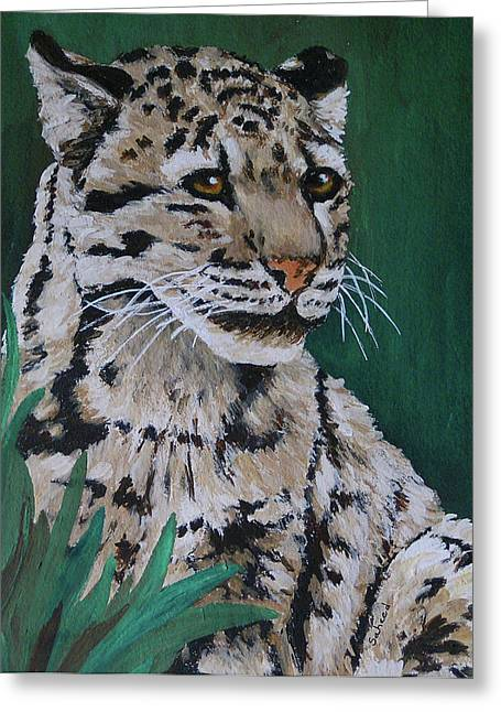 Clouded Leopard Greeting Card by Margaret Saheed