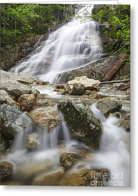 Awe Inspiring Greeting Cards - Cloudland Falls - Franconia Notch State Park New Hampshire USA Greeting Card by Erin Paul Donovan