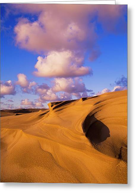 Clouds And Dunes Are Shape-shifters Greeting Card by Robert L. Potts