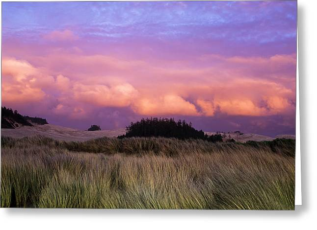 Clouds Catch Light From The Setting Sun Greeting Card by Robert L. Potts