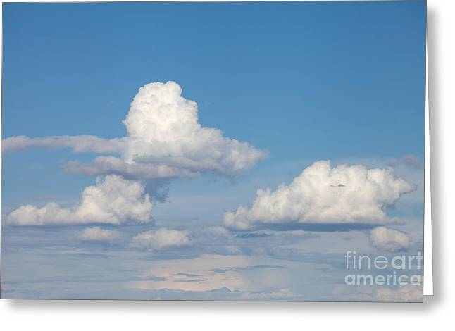 Daydream Greeting Cards - Clouds for Daydreams Greeting Card by Cindy Singleton