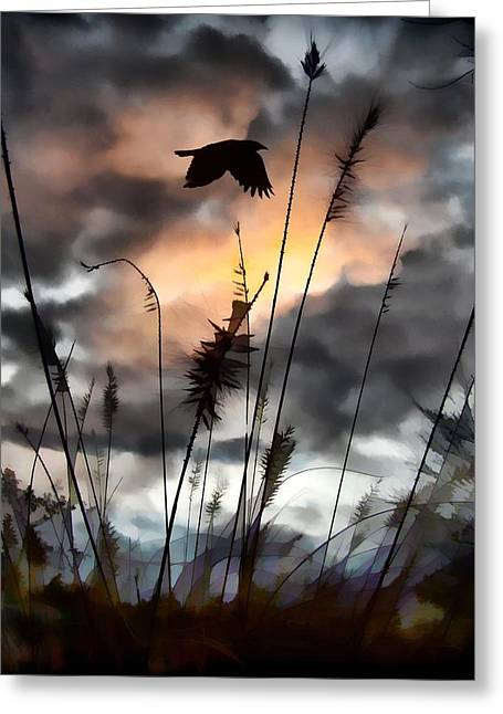 Clouds In Motion Greeting Cards - Clouds Greeting Card by Gothicolors Donna Snyder