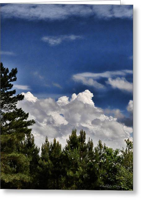 Cabin Interiors Digital Greeting Cards - Clouds Like Mountains Behind The Pines Greeting Card by Paulette B Wright