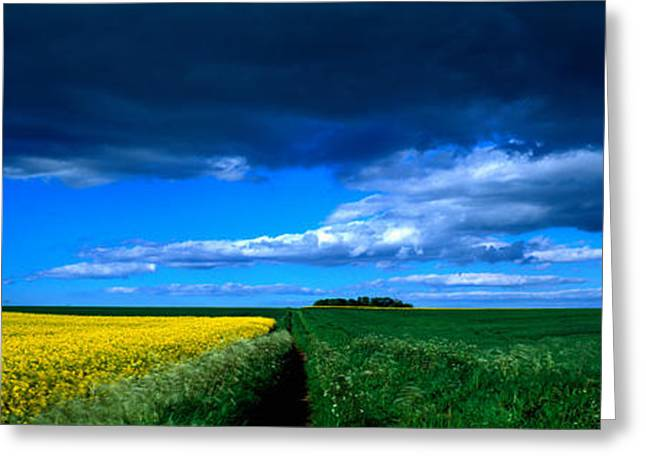 Field. Cloud Greeting Cards - Clouds Over A Cultivated Field Greeting Card by Panoramic Images
