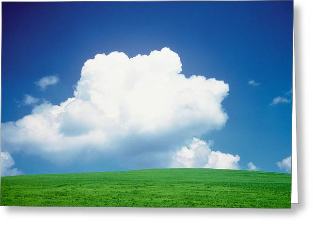 Cumulus Clouds Greeting Cards - Clouds Over A Grassland Greeting Card by Panoramic Images