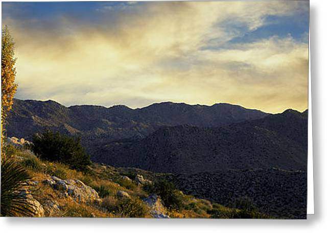 Park Scene Greeting Cards - Clouds Over Anza Borrego Desert State Greeting Card by Panoramic Images