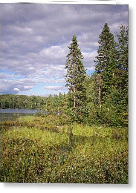 Grey Clouds Greeting Cards - Clouds Over Peck Lake Greeting Card by Richard Andrews