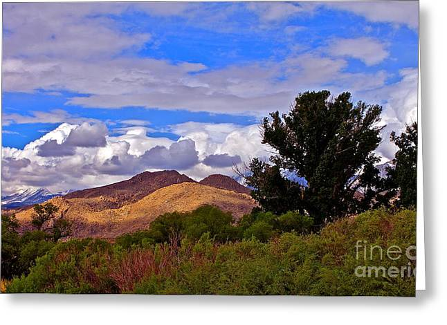 Tungsten Greeting Cards - Clouds Over Tungsten Hills Greeting Card by Tina Slee