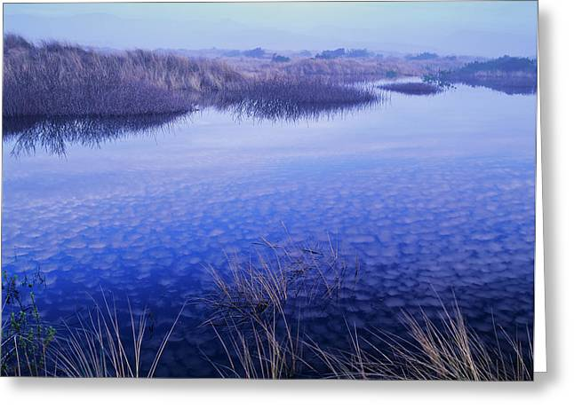 Clouds Reflected In The Deflection Greeting Card by Robert L. Potts