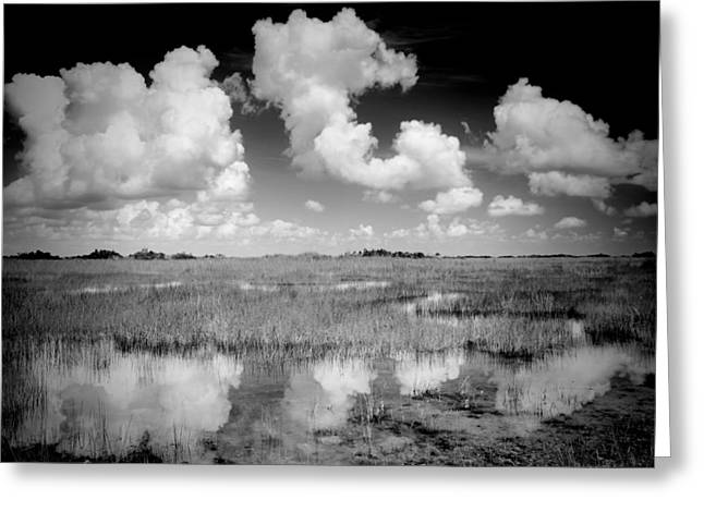 Reflections In River Greeting Cards - Clouds Reflection Greeting Card by Rudy Umans