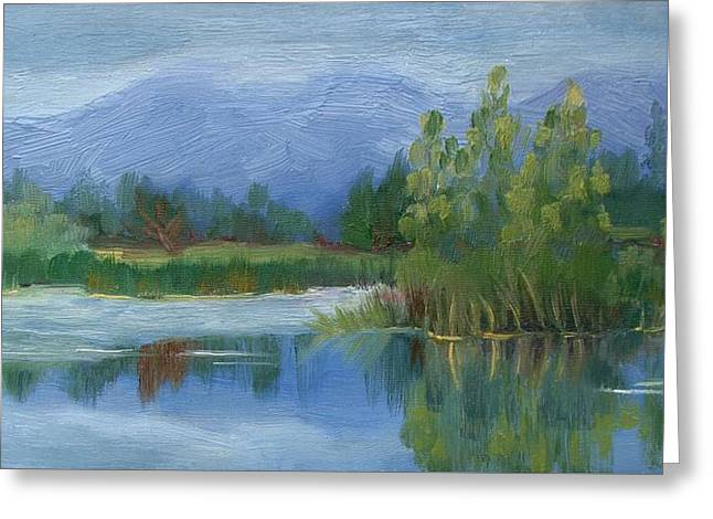 Walden Pond Greeting Cards - Cloudy day at Walden Ponds Greeting Card by Margaret Bobb