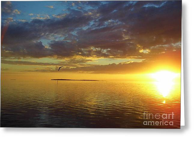 Cedar Key Greeting Cards - Cloudy Sky Sunset Greeting Card by D Hackett
