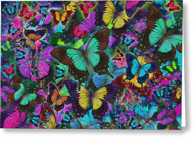 Euphoria Greeting Cards - Cloured Butterfly Explosion Greeting Card by Alixandra Mullins