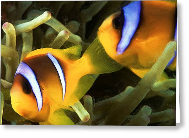 Undersea Photography Greeting Cards - Clown Fish 4 Greeting Card by Roy Pedersen