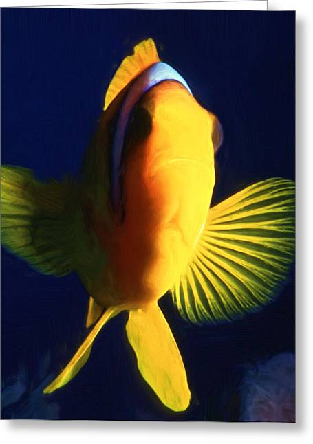 Undersea Photography Greeting Cards - Clown Fish 6 Greeting Card by Roy Pedersen