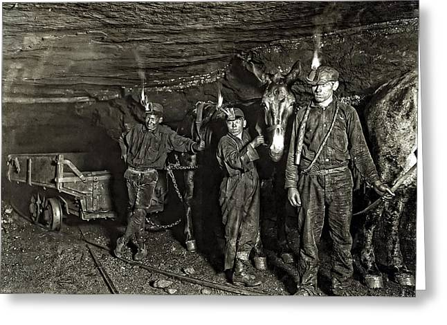 Recently Sold -  - Slavery Greeting Cards - Coal Mine Mule Drivers  1908 Greeting Card by Daniel Hagerman