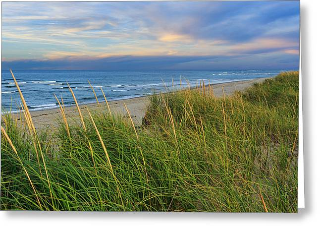 Cape Cod Landscapes Greeting Cards - Coast Guard Beach Cape Cod Greeting Card by Bill  Wakeley