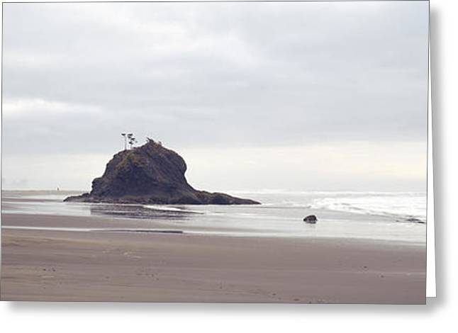 Coast La Push Olympic National Park Wa Greeting Card by Panoramic Images