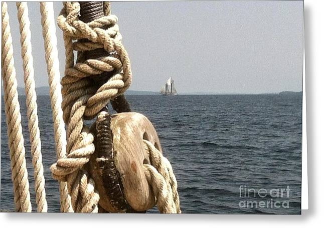 Ocean Sailing Greeting Cards - Coast of Maine Greeting Card by Barbara Chase