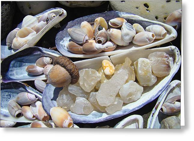 Agate Beach Greeting Cards - Coastal Beach art Prints Agates Shells Acorn Greeting Card by Baslee Troutman