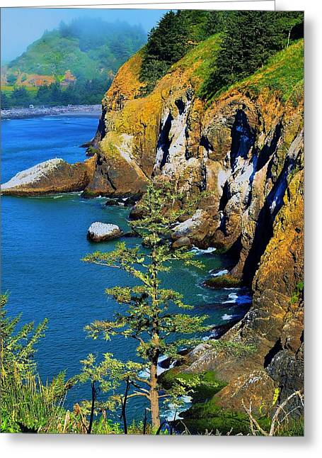 Best Sellers -  - Tidal Photographs Greeting Cards - Coastal Color Greeting Card by Vivian Markham
