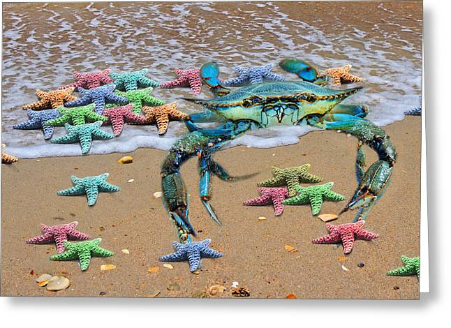 Seastar Greeting Cards - Coastal Crab Collection Greeting Card by Betsy A  Cutler