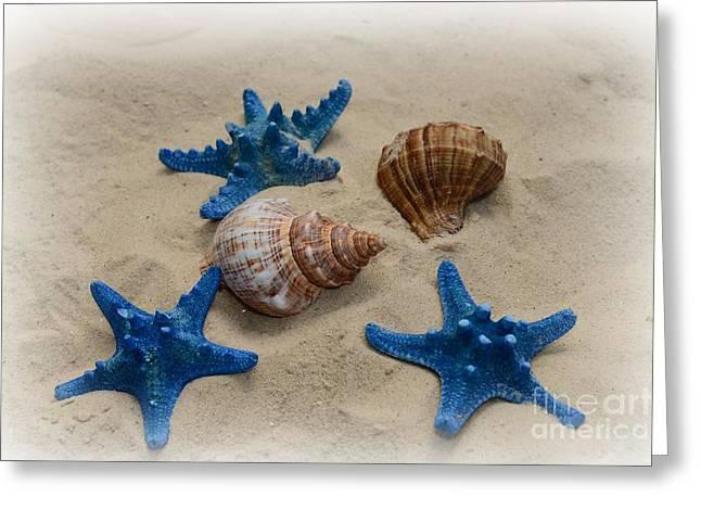 Star Fish Greeting Cards - Coastal Dreams Greeting Card by Paul Ward