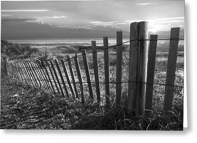 Foggy Beach Greeting Cards - Coastal Dunes in Black and White Greeting Card by Debra and Dave Vanderlaan