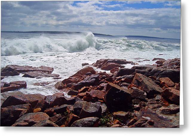 Maine Beach Greeting Cards - Coastal Maine Greeting Card by David Rucker