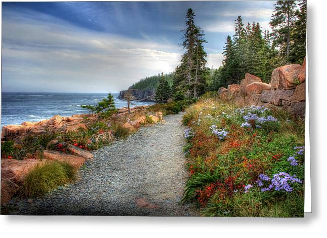 Coastal Maine Greeting Cards - Coastal Meandering Greeting Card by Lori Deiter