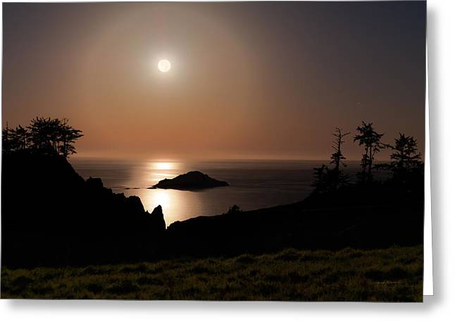 Sea Moon Full Moon Greeting Cards - Coastal Moon Dog Greeting Card by Leland D Howard